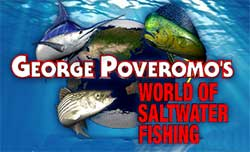 Captain Ariel Medero featured in article on George Poveromo's World of Satwater Fishing Website - Blackfin Tuna fishing in the Florida Keys